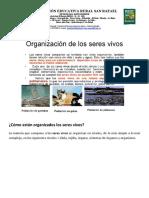 Organización de los seres vivos (1).docx