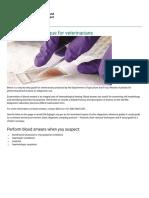 Blood smear technique for veterinarians.pdf