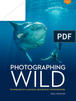 Photographing Wild - Paul Nicklen