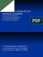 LP genital feminin.ppt