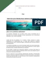 Qué son los problemas ambientales CIENCIAS SOCIALES.docx