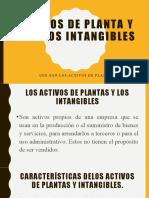 Activos de planta y activos intangibles (1)