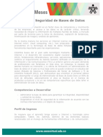 gestion_seguridad_base_datos especializacion.pdf