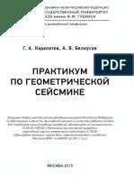 Geokniga Praktikum Po Geometricheskoy Seysmike