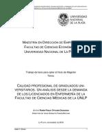 Ottosen, Pablo - Tesis MBA (FCE-UNLP)