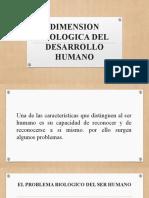 DIMENSION BIOLOGICA DEL DESARROLLO HUMANO.pptx