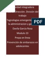 DavilaGarcia_Rosa_M23S2A5_Organizacion_Divisiondeltrabajo