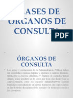 CLASES DE ÓRGANOS DE CONSULTA