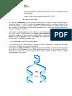 4.2 Replicación ADN