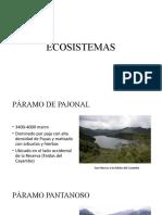 PRESENTACIÓN ECO (ECOSISTEMAS, FLORA Y FAUNA)