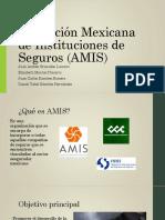 Asociación Mexicana de Instituciones de Seguros