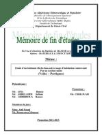 10049386.pdf