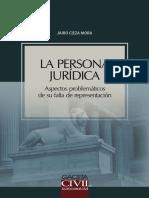 la-persona-juridica-aspectos-problematicos-de-su-falta-de-representacion.pdf