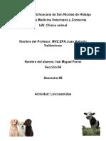 Grupos Farmacologicos.docx
