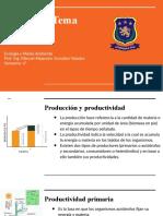 Productividades y Ciclos Ecologicos
