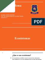 Ecosistemas y procesos energéticos