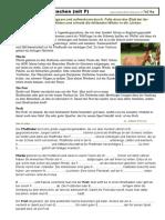 Te216pSachen.pdf