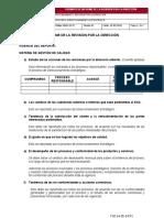 formatoinformederevisionporladireccionv1