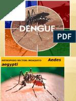 Clinica Dengue_04
