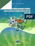 INEGI - SCEEM Marco conceptual y metodológico....pdf