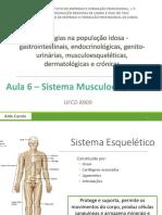 Aula 6 - Sistema Musculo-esquelético
