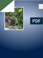 388306671-Problemas-Tratamiento.docx