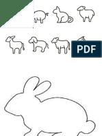 Contornos de animais
