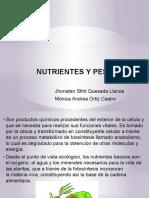 NUTRIENTES Y PESTICIDAS