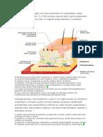 Quiz de Dermatologia