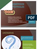 Nemátodos intestinales