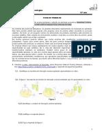 FT-interação enzima sustrato-inibição enzimática