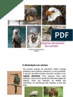 Regimes Alimentares Dos Animais[1]