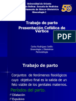 11. TRABAJO DE PARTO PRESENTACIÓN CEFà LICA DE VÉRTICE[1] (1).pptx
