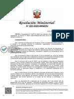 RM N° 202-2020-MINEDU.pdf