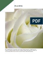 Trandafirul alb şi stima de sine