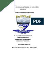 Programa Analitico Salud Mental_