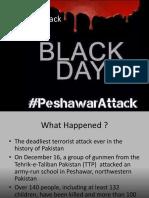 peshawarattack-160109052035.pdf