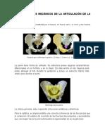 BIOMECANICA CADERA.docx