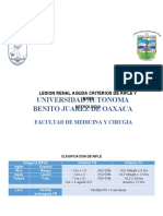 LESION RENAL AGUDA CRITERIOS DE RIFLE Y AKIN