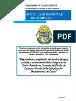 TDR SB CUSIPATA