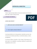 Principios Didácticos.docx