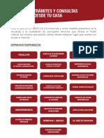 SERVICIOS-PJ-ONLINE.pdf