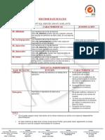 Caracteristicas enterprise.pdf