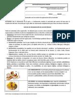 GUÍA -1 NIVELES DE ORGANIZACIÓN DE LOS  MATERIALES