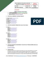 Modelo Word Plan Vigilancia, Prevención y Control Covid19-1.pdf