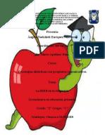 Informe Sobre La Rieb y Formato 2 y 3