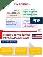 DIAPOS FINAL PROYECTO AGRONEGOCIOS