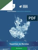 tepatitlan de morelos.pdf