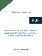 Versão Preliminar CC1.pdf