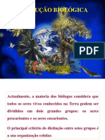 9.evoluçao